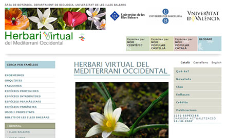 diseño web Herbari Virtual